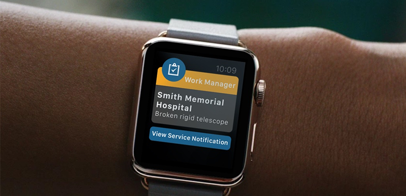 apple-watch-sap-ux